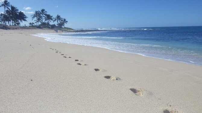 Footprints in the sand-Western Oahua