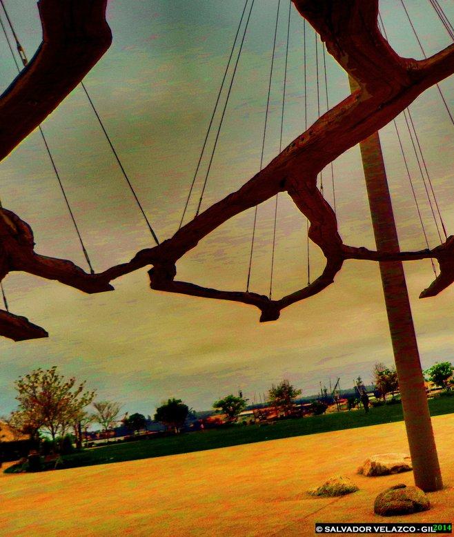 Bay Park photo