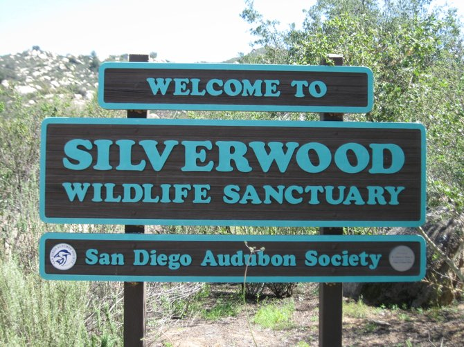 Welcome to Silverwood Sanctuary
