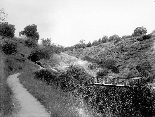 Mulvey Canyon, today's 6th Ave, filled in before 1915 Exposition