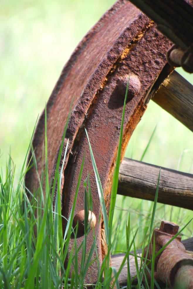 Los Jilgueros Preserve