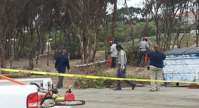 Park & Recreation work crew at Sunset Cliffs last month