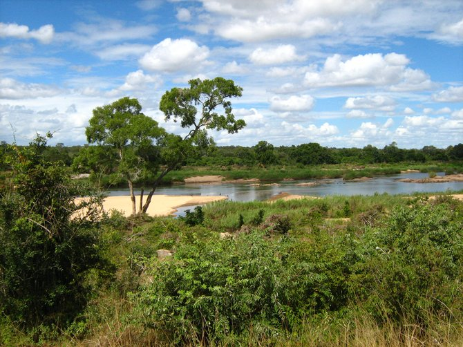 View over the Sabie River in Kruger National Park, South Africa