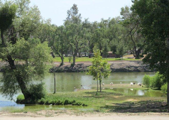Lakeside photo