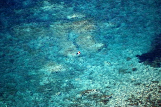 A lone scuba diver explores the crystal blue Mediterranean waters off the coast of Sicily.