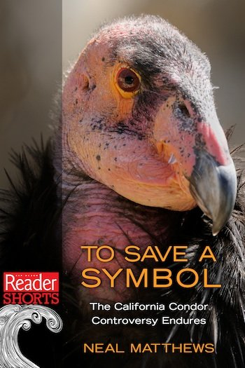 Photo To Save A Symbol The California Condor Controversy Endures By