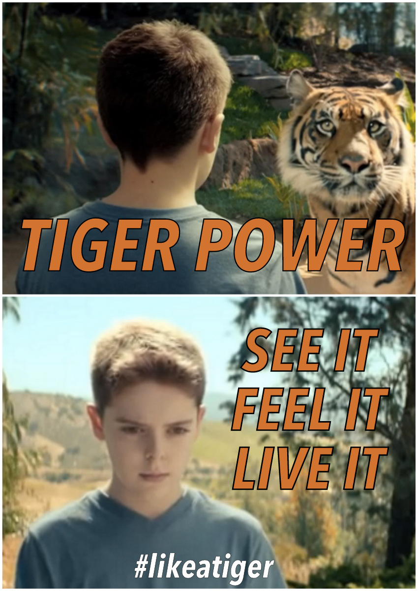 "Scene from M&C Saatchi LA's ""Tiger Campaign"" for the San Diego Zoo Safari Park featuring happy, well-adjusted child."