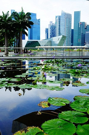 The crisp, clean beauty of Singapore is a contrast to the rest of Indochina.