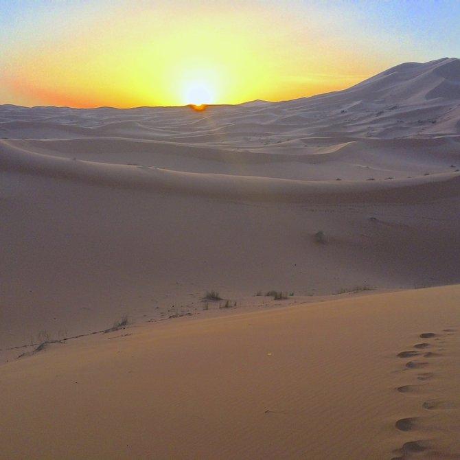 Dawn on the desert
