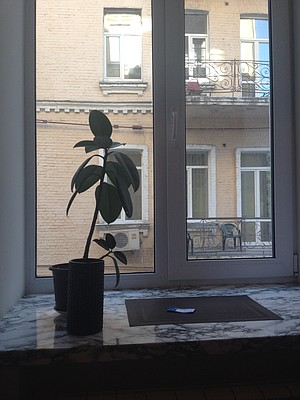 View from my apartment's desk. The concrete apartment stairs have a strong old mildewy smell. Just saying.