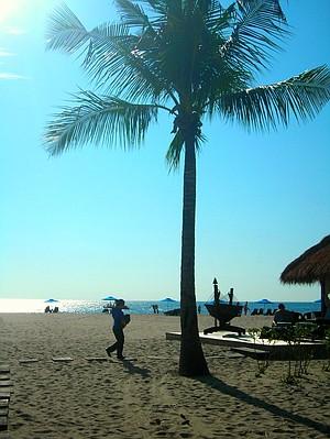 Sun-dappled moments at Pantai Dalit Beach.