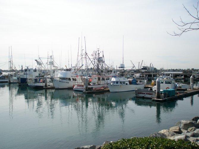 39 g 39 street pier downtown san diego ca san diego reader for Pier fishing san diego