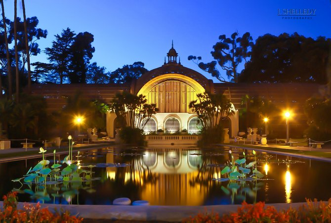 Balboa Park Botanical Gardens At Night San Diego Reader