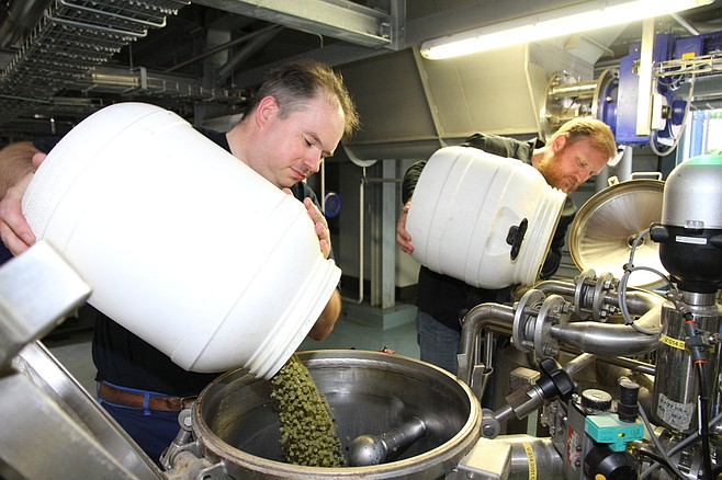 St-Feuillien's Alexis Briol and Green Flash's Chuck Silva adding hops at the former's facility in Belgium.