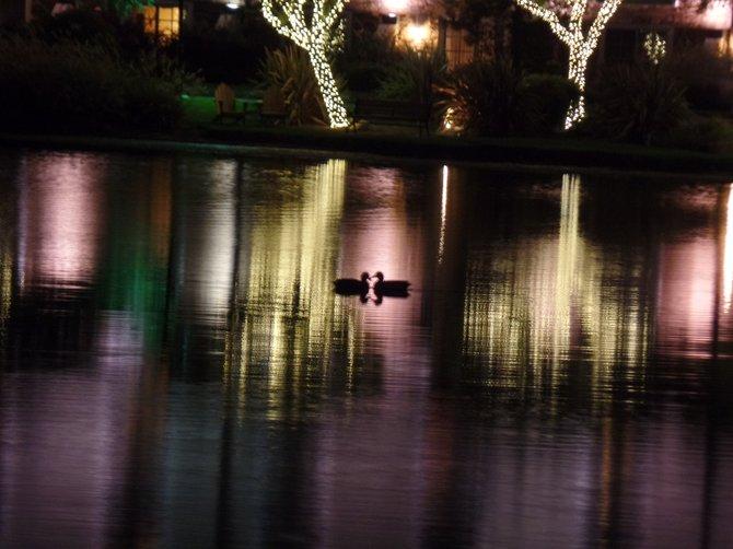 Barona Casino Lake: colorful lovers.