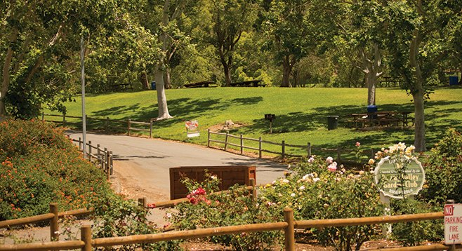 Many trails radiate from Lake Poway's grassy, manicured core. This is the entrance.