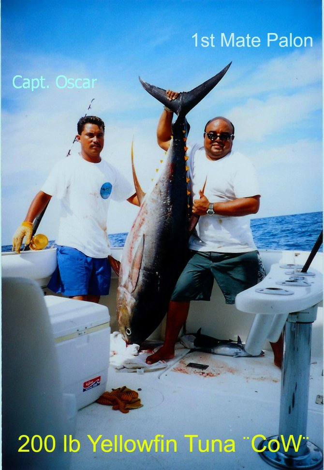 Capt Oscar and First Mate Palone with a 200 lb Yellowfin Tuna boated in Puerto Vallarta. www.masterbaiters.com.mx for more...