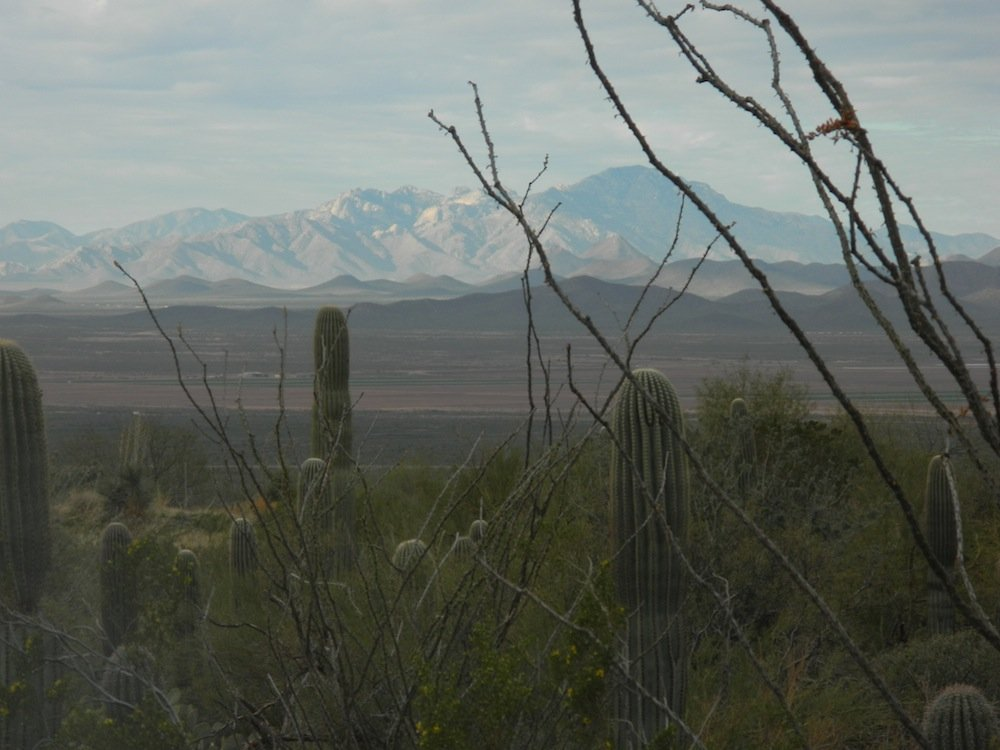 View from the Arizona Sonora Desert Museum.