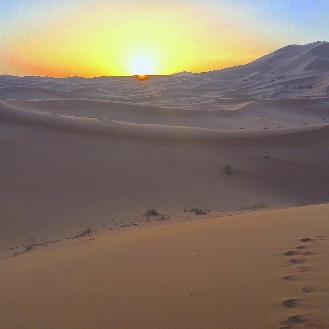 Dawn on the Sahara.