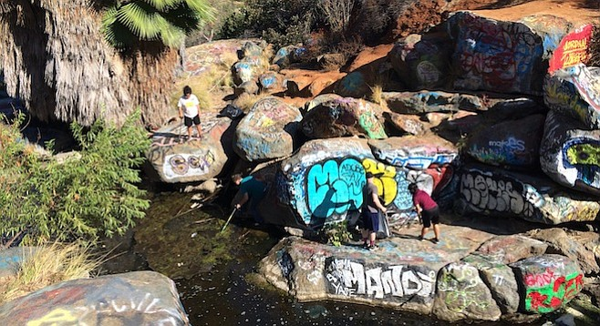 Adobe Falls cleanup - Image by Ryley Webb