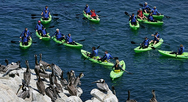 Yakety Kayak San Diego Reader