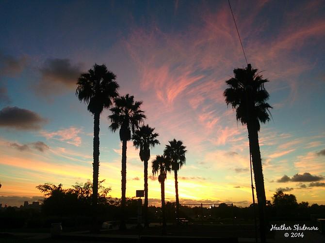 North Park Sunset
