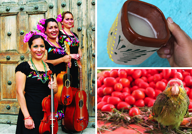 Clockwise from left: photo shoot of the folk group Las Palomitas Serranas; the drink of the gods, pulque; a parrot in Tepotzotlán's market.