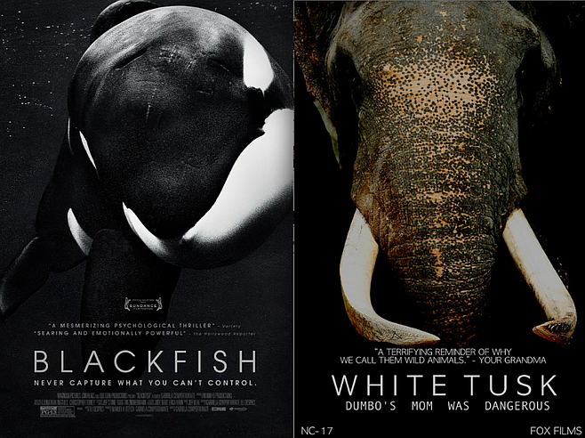 "A FOX Films representative dismissed any similarities between the two film posters are ""totally coincidental,"" calling the comparison ""a typical liberal media tactic."""