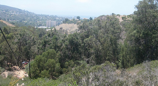 The view toward La Jolla beaches from the top of the steep trail.