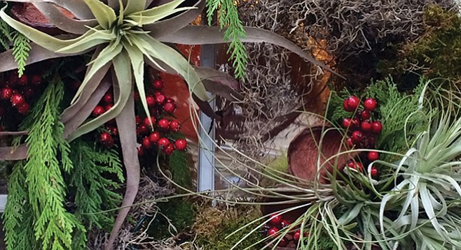 Wreath with Tillandsia from Green Gardens