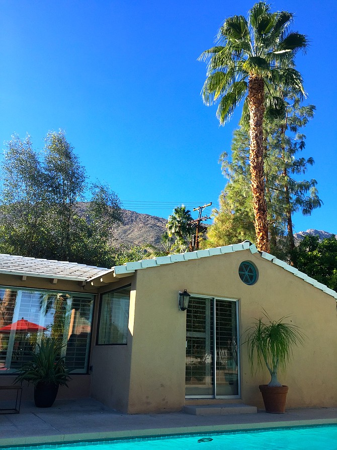 Having a classic Palm Springs moment. The pool. The palm trees. The mountains. The vacation for sure.