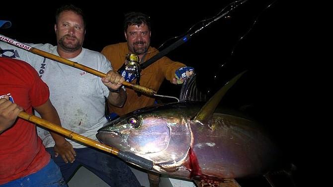 Hurricane Bank Yellowfin Tuna.