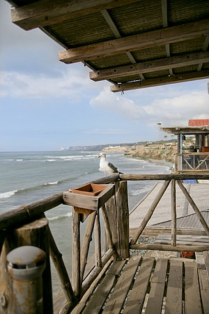 The Baja coastline from a restaurant patio in Puerto Nuevo.