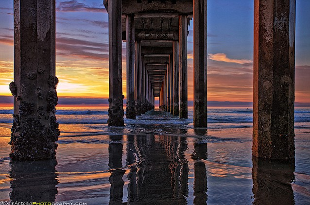 Neighborhood photo: Under the Scripps Pier, La Jolla.