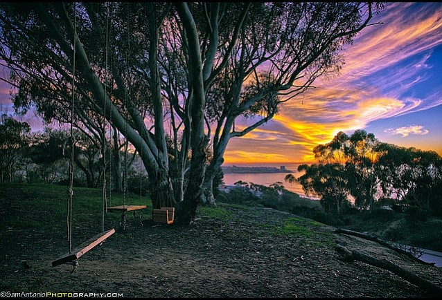 "The ""secret swings"" on the campus of UCSD in La Jolla. © Sam Antonio Photography. www.SamAntonio.com"