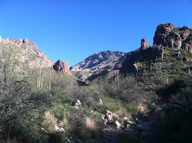 Hiking through Ventana Canyon