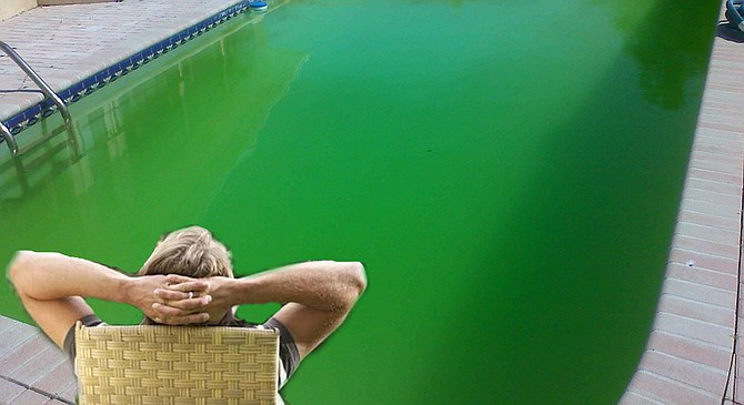 James McFadden spent months not working on his pool to get it ready for St. Patrick's Day.