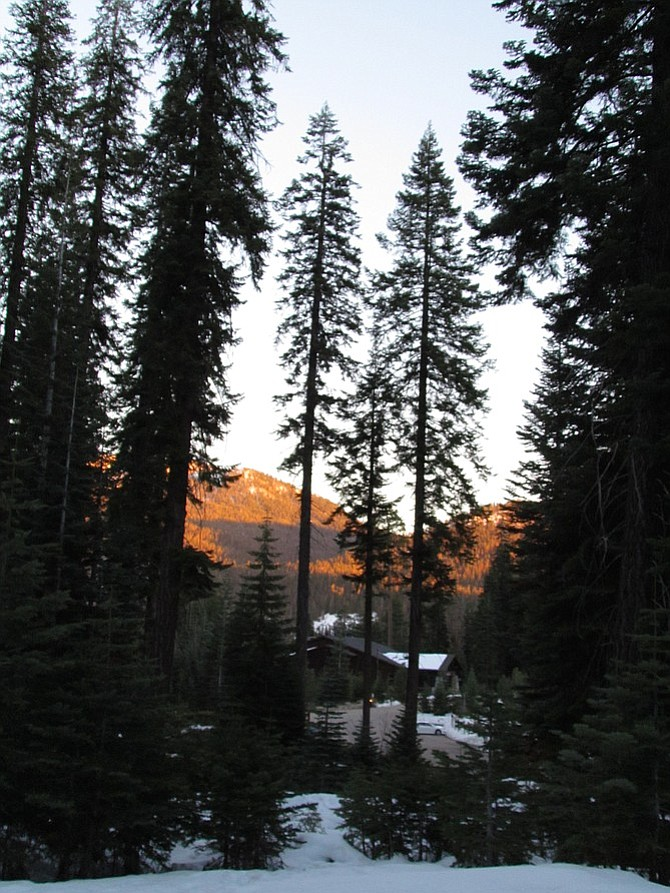 Wuksachi Lodge at sunset.