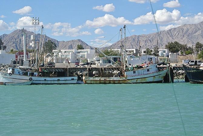Lounging In Baja S San Felipe San Diego Reader