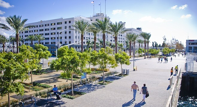 Jacarandas and palms along Harbor Drive