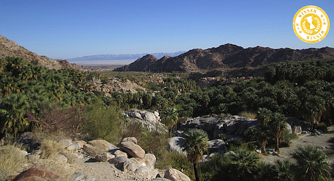 Morning over the Guadalupe Canyon oasis.