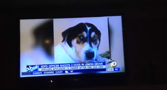 Pepper was 14 years old, blind, and toothless when a police officer perceived her as a threat.