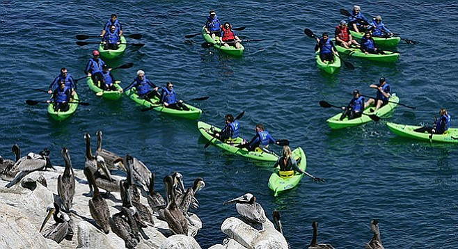 Kayakers at La Jolla Cove