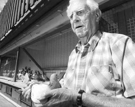 """Gene Hamilton.  Hamilton and his """"grandson,"""" John Timmerman, have about 750 pigeons in Jamul, the largest collection in San Diego County."""