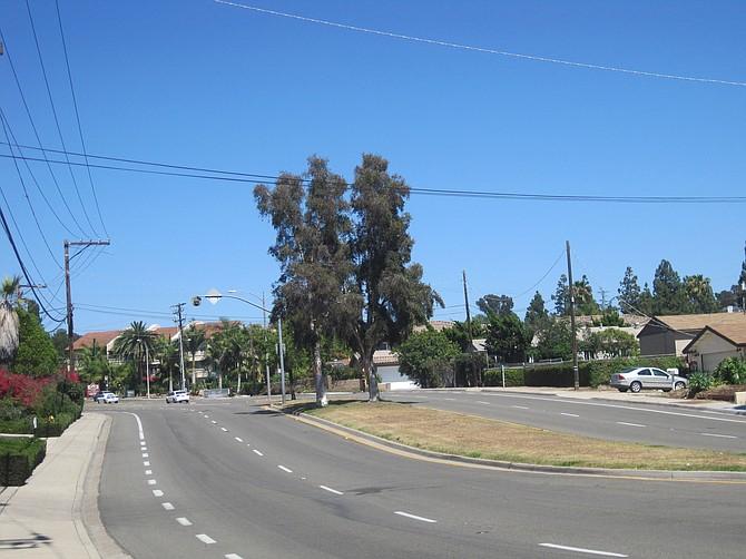 Lake Murray Boulevard median