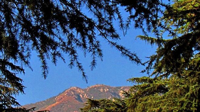 Echo Mountain from Christmas Tree Lane.