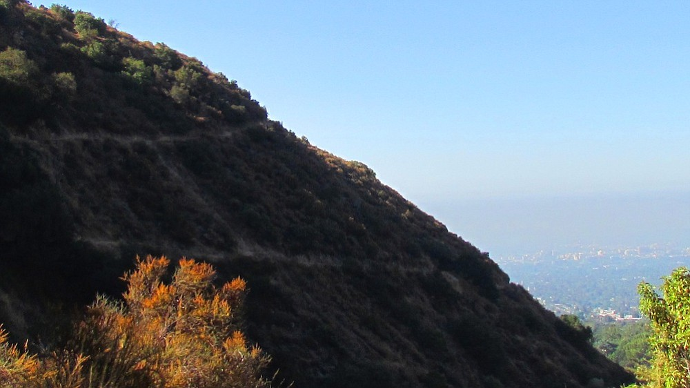 Trail to Mt. Echo on the left, Altadena and Pasadena on the right.