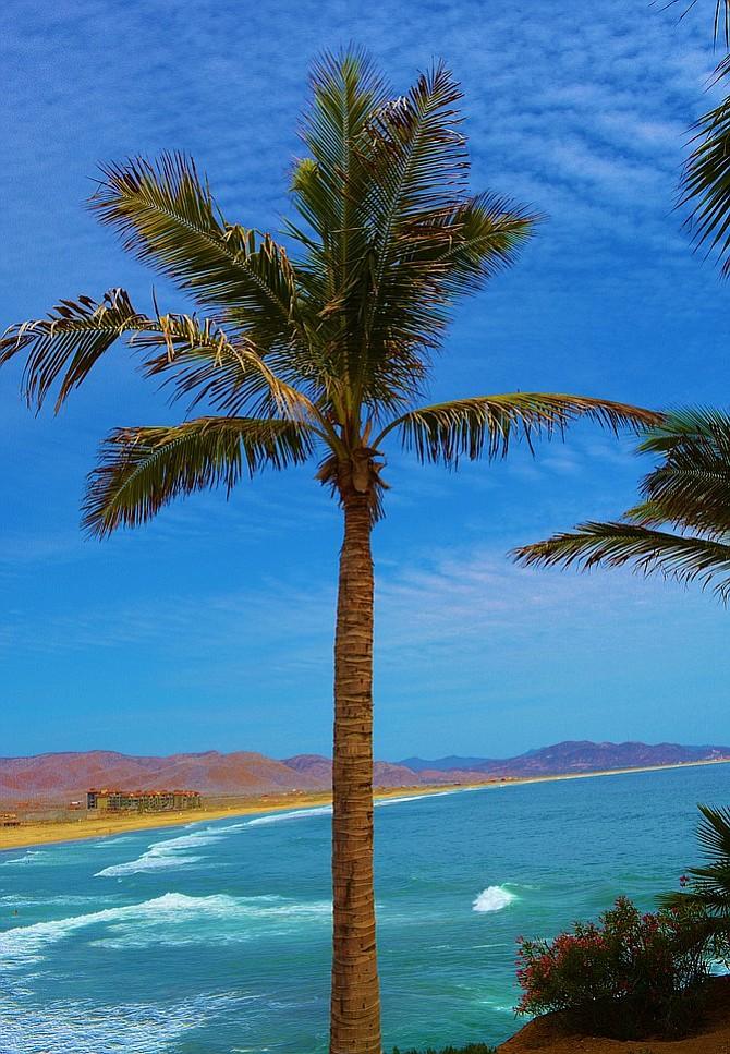 Overlooking the beach break from Hacienda Cerritos.