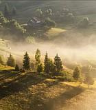 Pastoral summer landscape.