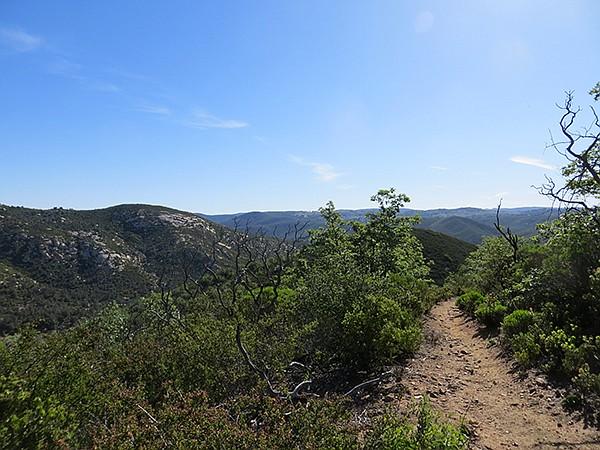 South view, Pine Ridge Trail